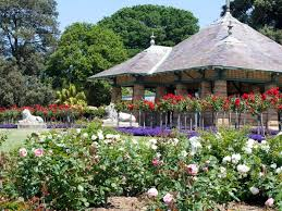 Botanical Garden Sydney by Royal Botanic Garden And The Domain City Centre Attraction