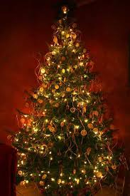 christmas tree with lights christmas tree with lights happy holidays