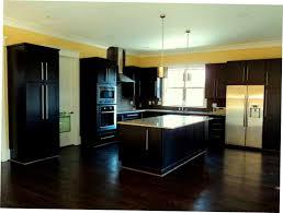 dark kitchen cabinets with dark wood floors pictures black kitchen cabinets wood floor furniture info dark wood floors