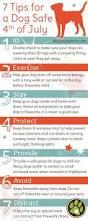 spirit halloween dayville ct 173 best holiday safety images on pinterest pet health safety