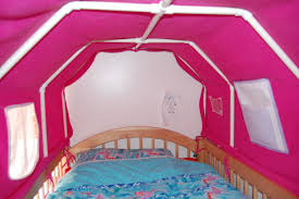 Bed Tents For Bunk Beds Everyone S Excited And Confused Pictures Of The Top Bunk Bed Tent