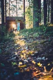 Small Cabins 261 Best Cabin In The Woods Images On Pinterest Architecture