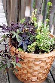 diy basket planter how to turn any basket into a decorative
