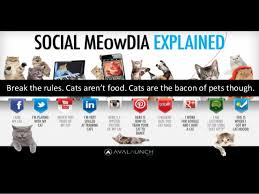 Memes Social Media - snackability study 01 meme ification of social media explained wit