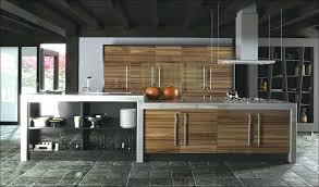 kitchen high cabinet european kitchen cabinets dsellman site