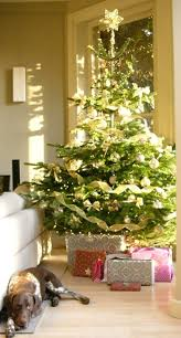 decorated trees services pines and needles