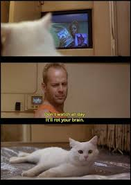 Fifth Element Meme - 74 best the fifth element 1997 images on pinterest the fifth