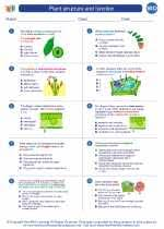 plant structure and function biology worksheets and study guides