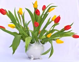 Flowers In Vases Images Flowers In Vase Wallpaper Wallpapersafari