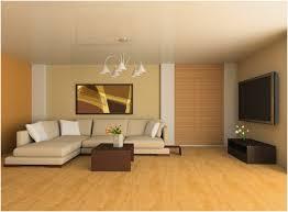 home painting color ideas interior the superior photographs home color ideas popular yonjamedia com
