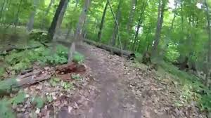 Maybury State Park Map Novi Lakeshore Park Novi Tree Farm Raw Youtube