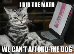 Lol Cat Meme - lolcat weknowmemes generator