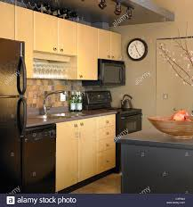 kitchen cabinet doors vancouver condo kitchen with black appliances and pale wood cupboard