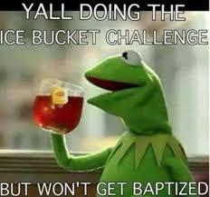 Funny Kermit Memes - sharing funny kermit memes steemit