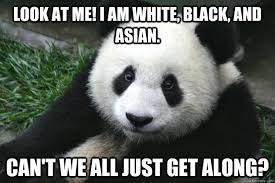 Can T We All Just Get Along Meme - look at me i am white black and asian can t we all just get