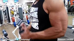 workout chest and arms emphasis hodgetwins