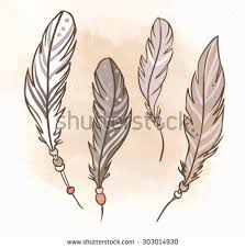 159 best feather ill images on feather