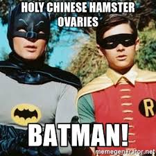 Chinese Meme Generator - holy chinese hamster ovaries batman batman and robin meme generator