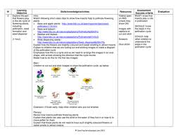 Life Cycle Of A Flowering Plant - life cycle of a flowering plant template by katharineh teaching