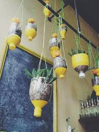the greenery obsessed with indoor hanging planters orla collective
