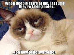 Awesome Quotes About Cats Being - the last time i checked we have one grumpy cat quotes grumpycat