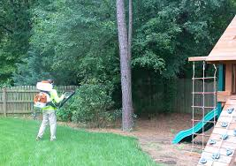 residential mosquito control ace mosquito control