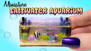 miniature saltwater aquarium tutorial diy do with loop