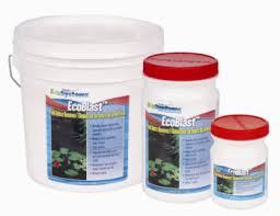 Aquascape Pond Products Pond Algae Control Aquascape Pond Supplies