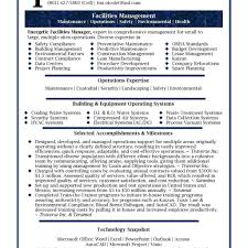 best resume format for executives executive summary resume exle exles personal senior sales with