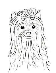 downloads online coloring page yorkie coloring pages 18 for free