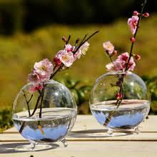 Round Glass Vase Online Get Cheap Round Glass Vase Aliexpress Com Alibaba Group