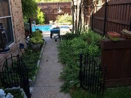 North Facing Backyard Going Desert And Native Plants In Backyard North Dallas Area