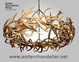 How To Make Antler Chandeliers Deer Antler Chandelier Xl Antler Chandeliers Antler Chandelier