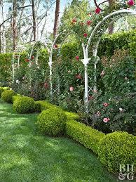 Living Trellis Best 25 Garden Arches Ideas On Pinterest Garden Archway Arbour
