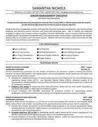 Resume Examples Pdf Free Download by Free Sample Resume Templates