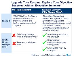 Professional Summary On Resume Download Objective Summary For Resume Haadyaooverbayresort Com