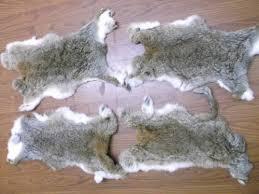 Deer Hide Tanning Companies Wild Rabbit Skins Animal Skin Tanning Services