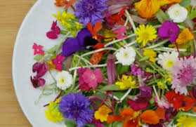 flowers edible edible flower salad recipe livestrong