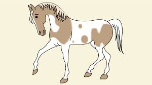 how to draw a simple horse 11 steps with pictures wikihow