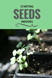 starting seeds indoors home garden joy