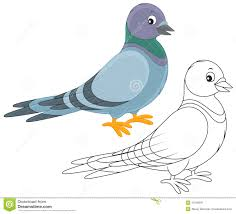 116 pigeon clipart clipart fans