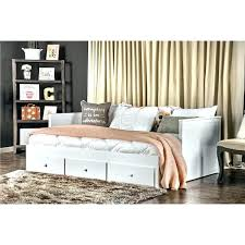 daybed with bookcase and trundle u2013 hercegnovi2021 me