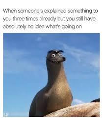 Dory Memes - finding dory funny memes for kicks and giggles pinterest