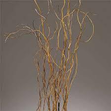 curly willow branches curly willow branches 3 4 144 branches