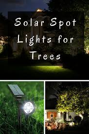 Landscape Spot Lighting Accent Your Garden Features At With Solar Spot Lights For Trees