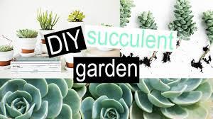 Succulent Planter Diy by Diy Succulent Pots Youtube