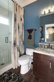 Peacock Bathroom Ideas by 21 Best Shades Of Brown U0026copper With Shades Of Blue Images On