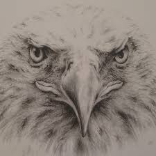 206 best b u0026w pencil drawings images on pinterest drawings draw