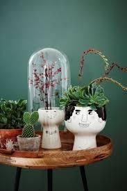 32 best u0026potten images on pinterest plants gardening and home