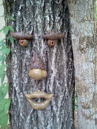 tree face tree faces forest face collection alabama tree faces